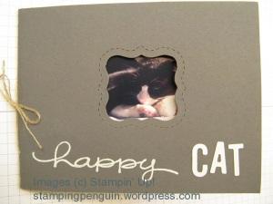 Cat Mini Book