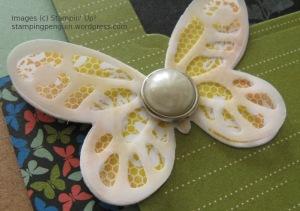 Mojo408Butterflies_Closeup
