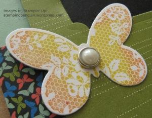 Mojo408Butterflies_ProtoCloseup