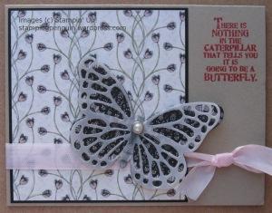 ButterflyPirouette