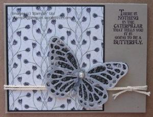 ButterflyPlumAlt